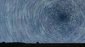 Star Trails over filed with lonely tree. Night sky startrails. Stock Photography
