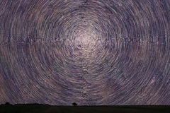 Star Trails over filed with lonely tree. Night sky startrails. Royalty Free Stock Photo