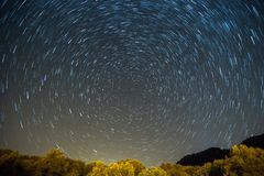 Star trails Startrails. Star trails over a trees Stock Photography
