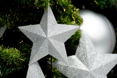 Star on tree Royalty Free Stock Photos