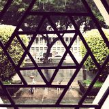 Star window. In a park in a rainy day Stock Photo