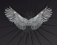 Star Wings. Grunge Star Wings vector illustration Royalty Free Stock Image