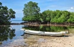 Stara łódź w namorzynowym lesie Fotografia Royalty Free
