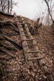 Stara łamająca drewniana drabina Zdjęcie Royalty Free