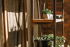 Stara ściana pełno z żelaznym ośniedziałym stojakiem i półki sukulenty, kwiaty, książki i wystrojów przedmioty, Salowy strzał w s fotografia stock