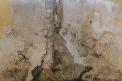 Stara ściana w łazience zakrywa z foremką obrazy royalty free