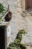Stara ściana z birdhouse i wspinaczkowym bluszczem zdjęcia royalty free