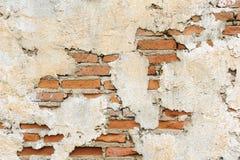 Stara ściana z cegieł tekstura Obraz Royalty Free