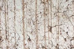 Stara ścienna tło tekstura Zdjęcie Royalty Free