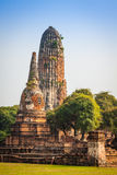 Stara świątynia Ayuthaya, Tajlandia Obrazy Royalty Free