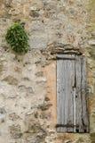 Stara żaluzja i roślina w Deia zdjęcia royalty free