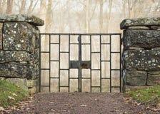 Stara żelazna brama w starej kamiennej ścianie przed mglistym lasem Obraz Stock