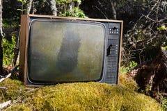 Stara analogowa telewizja w lesie Zdjęcia Royalty Free