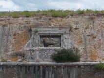 Stara błagająca ulgi ściana z cegłami i roślinami fotografia stock