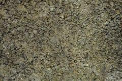 Stara betonowa grunge kamiennej ściany tekstura Zdjęcia Stock