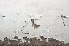 Stara biel ściana z spadać z tynku zdjęcie stock