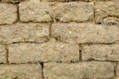 Stara borowinowa cegły ściana Obrazy Stock