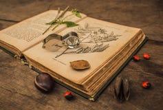 Stara botaniczna książka obraz stock