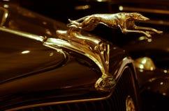 Stara bród ikona obrazy royalty free