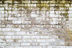 Stara brudna ściana z cegieł tekstura obraz royalty free
