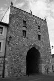 Stara Burgos katedra Obraz Stock