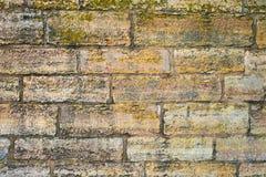 stara ceglana ściana obraz stock
