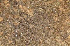 Stara cementowa tynk ściany tekstura Fotografia Royalty Free