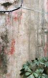 stara ściany Zdjęcia Stock