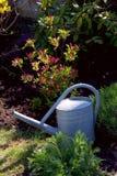 Stara cynkowa metalu podlewania puszka w ogródzie z kwiatami i trawą Zdjęcia Stock