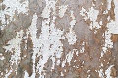 Stara deska z obieranie farbą Obrazy Royalty Free
