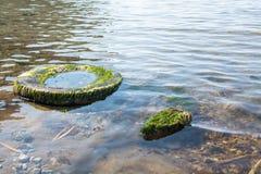 Stara dok opona zanurzona w wodzie Zdjęcie Royalty Free