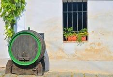 Stara drewniana baryłka dla wina Klasyczny wino loch w Europa Wino scenary Zdjęcie Royalty Free