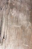 Stara drewniana deski tekstura, podławy zatarty wietrzejący nawierzchniowy drzewo z pęknięciami i narysy, antyczna drewno deska,  obrazy royalty free