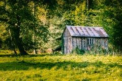 Stara drewniana jata w lesie Obraz Royalty Free