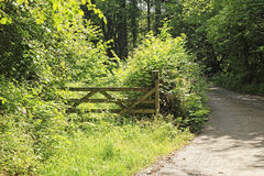 Stara drewniana rolna brama Obrazy Stock
