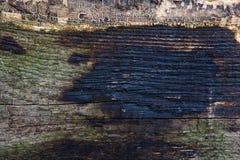 Stara drewniana tekstura zdjęcie stock