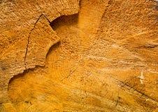 Stara drewniana tekstura, brązów kolory Obraz Royalty Free