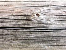 Stara drewniana tekstura dla twój projekta Fotografia Stock