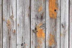 Stara drewniana tekstura z naturalnymi wzorami Zdjęcie Royalty Free
