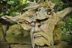 Stara drewniana twarz na korzeniach, twarz w korzeniu, twarz od drewnianego Zdjęcie Royalty Free