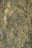 Stara drewno barkentyna Obraz Royalty Free