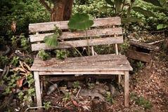 Stara drewno ogródu ławka, Zdjęcia Stock