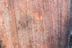 Stara drewno powierzchnia, drewniany tło, drewniana tekstura Zdjęcie Royalty Free