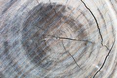 Stara drewno powierzchnia, drewniany tło, drewniana tekstura Zdjęcia Royalty Free