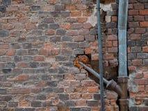 Stara drymba na ściana z cegieł obraz stock