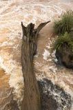 Stara drzewna bela wtykał w skałach rzeka zdjęcie stock