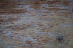 Stara flaked drewniana tapeta z gwozdziem zdjęcia stock