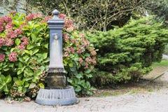 Stara fontanna z przenośne urządzenie wodą, Levico Termen, Włochy obraz stock