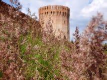 Stara fortyfikaci ściana na wzgórzu Zdjęcia Royalty Free
