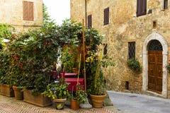 Stara grodzka aleja w Tuscany Zdjęcie Stock